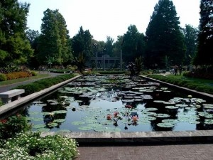 Missouri Botanical Garden Veiw