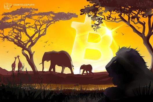 Documentary Review – Banking on Africa: The Bitcoin Revolution